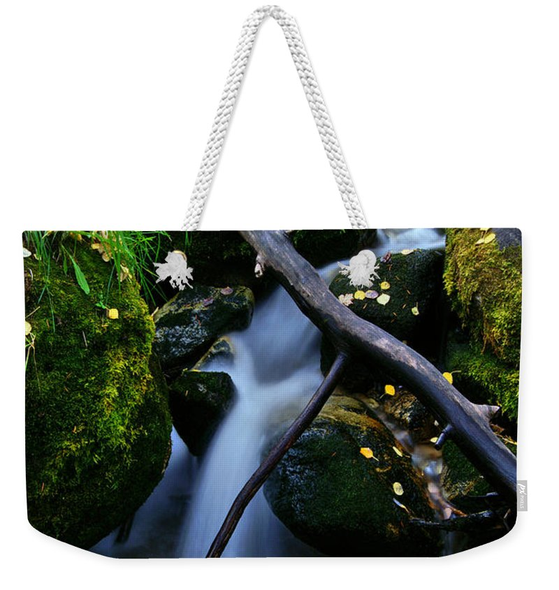Fall Foliage Weekender Tote Bag featuring the photograph Follow Me by Jeremy Rhoades