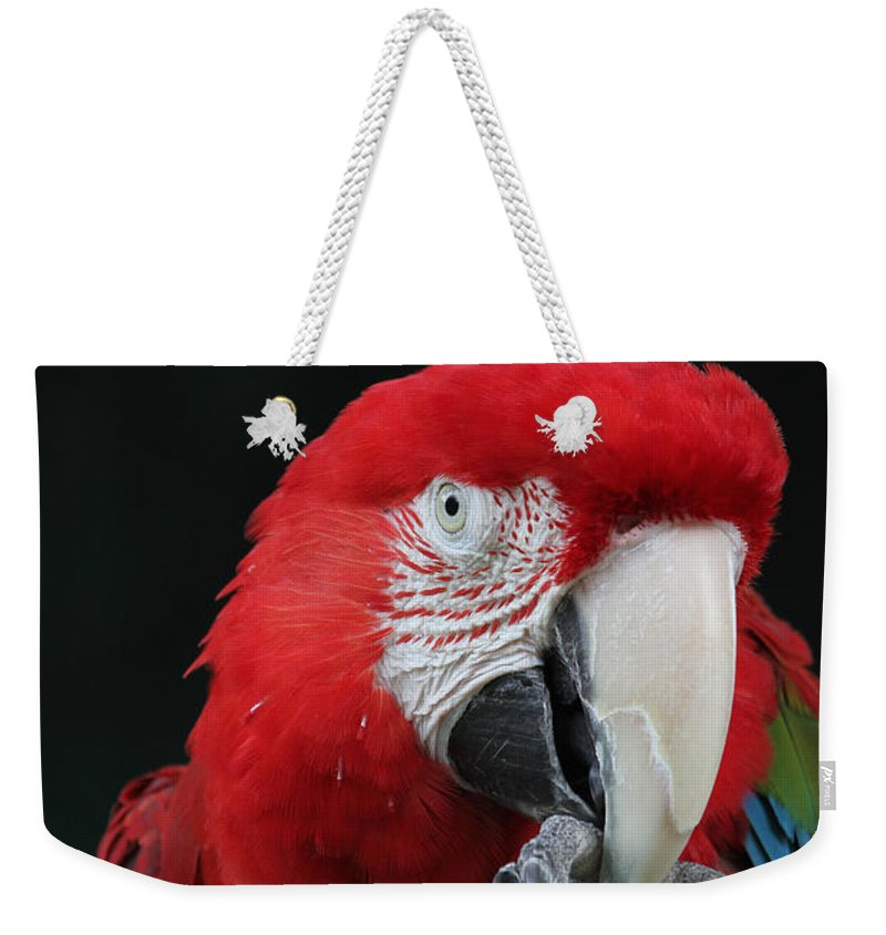 Green-winged Macaw Weekender Tote Bag featuring the photograph Foot Hold by Judy Whitton