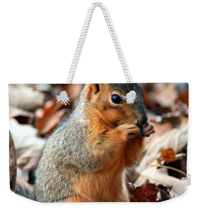 Squirrel Weekender Tote Bag featuring the photograph Foraging Through The Autumn Leaves by Optical Playground By MP Ray
