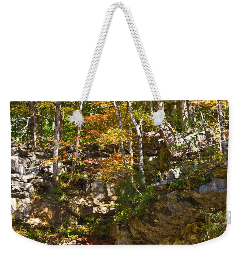 Branches Weekender Tote Bag featuring the photograph Forest Above The Cave by Ed Gleichman