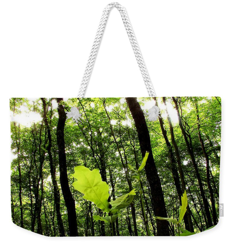 Air Weekender Tote Bag featuring the photograph Forest by Dan Radi