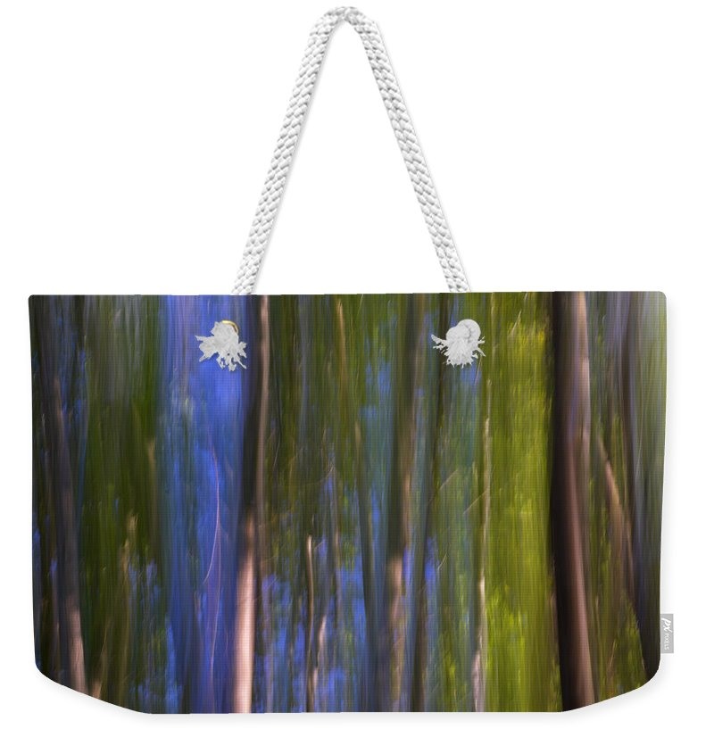Abstracts Weekender Tote Bag featuring the photograph Forest Dreams by Guido Montanes Castillo