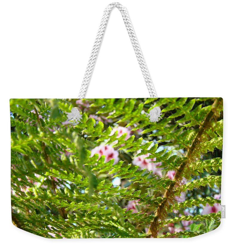 Fern Weekender Tote Bag featuring the photograph Forest Fern Branches Art Prints by Patti Baslee
