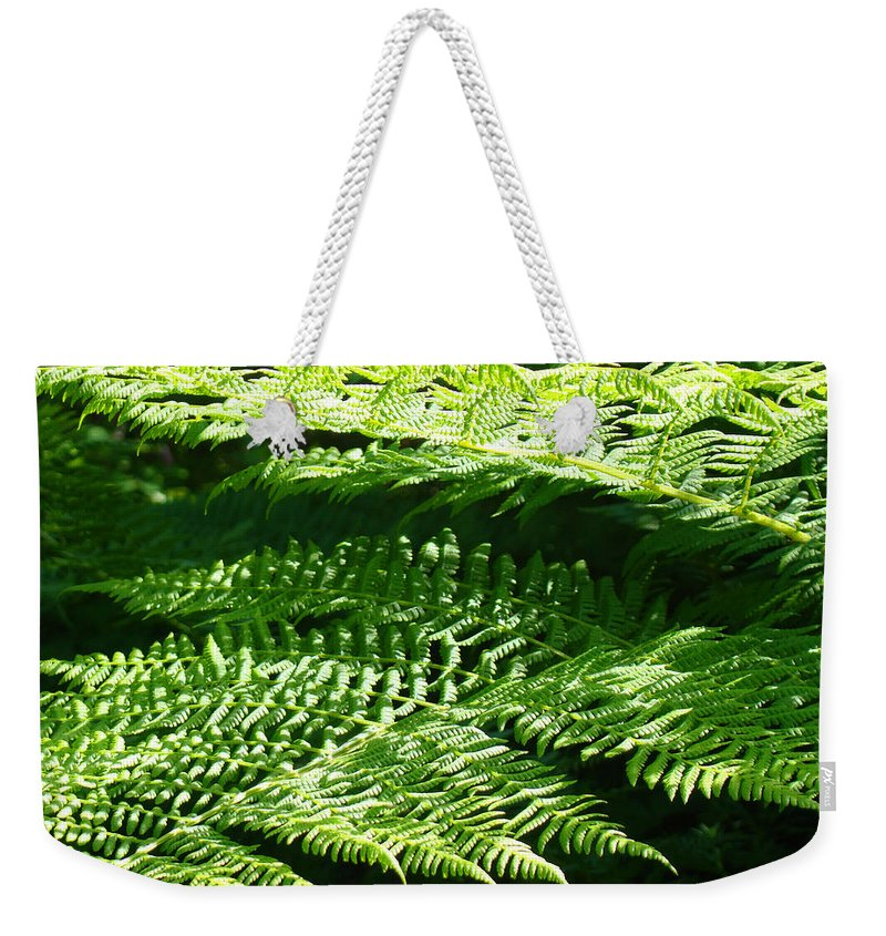 Fern Weekender Tote Bag featuring the photograph Forest Ferns Art Prints Green Fern Nature by Patti Baslee