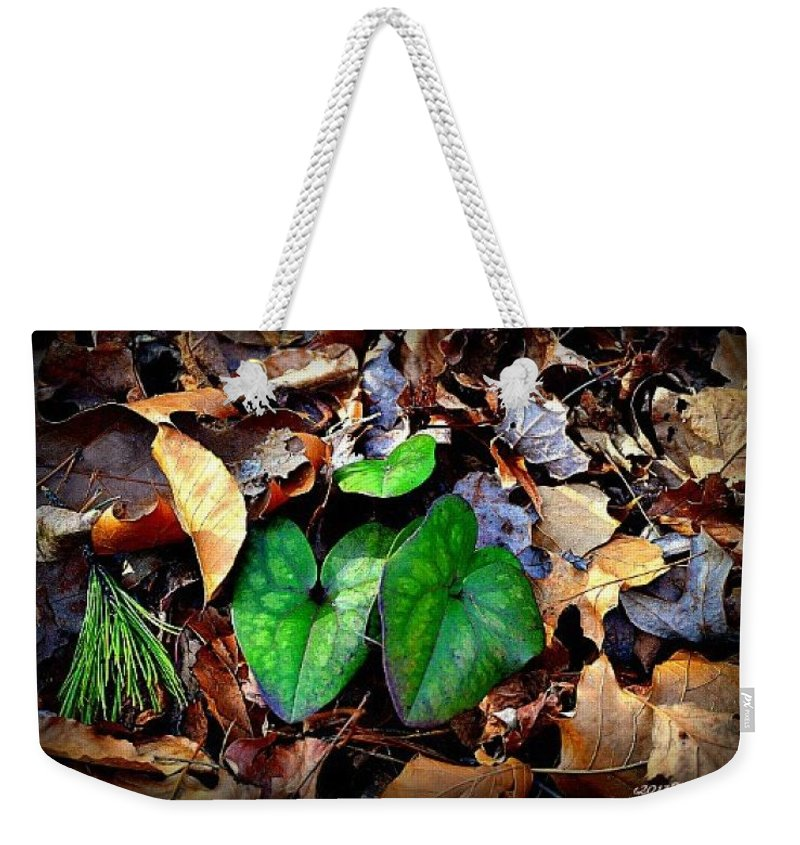 Leaves Weekender Tote Bag featuring the photograph Forest Flora by Tara Potts