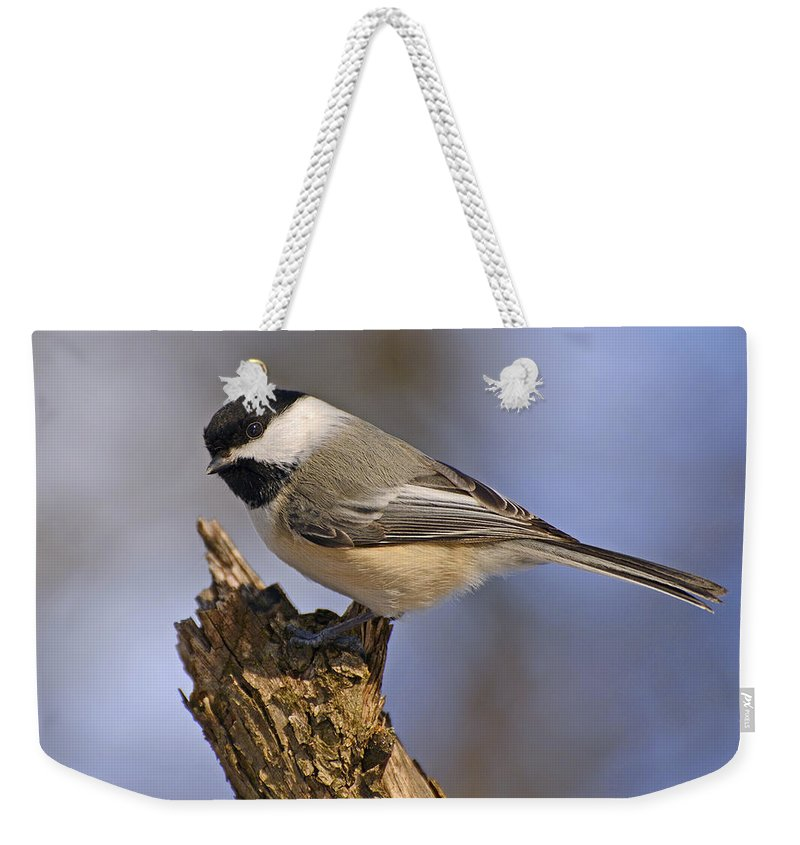 Black-capped Chickadee Weekender Tote Bag featuring the photograph Forest Friend by Joshua McCullough