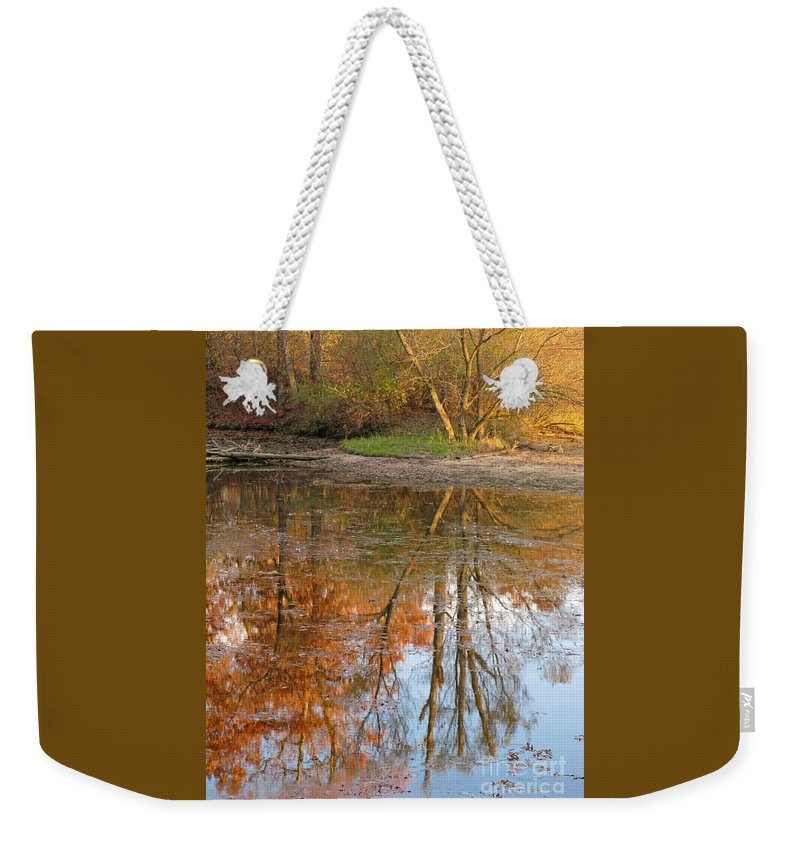 Autumn Weekender Tote Bag featuring the photograph Forest Glow by Ann Horn