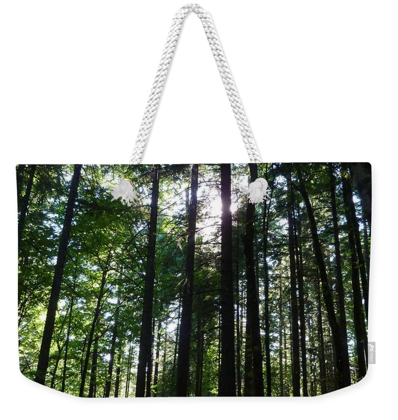 Trees Weekender Tote Bag featuring the photograph Forest Light by Rain Shine