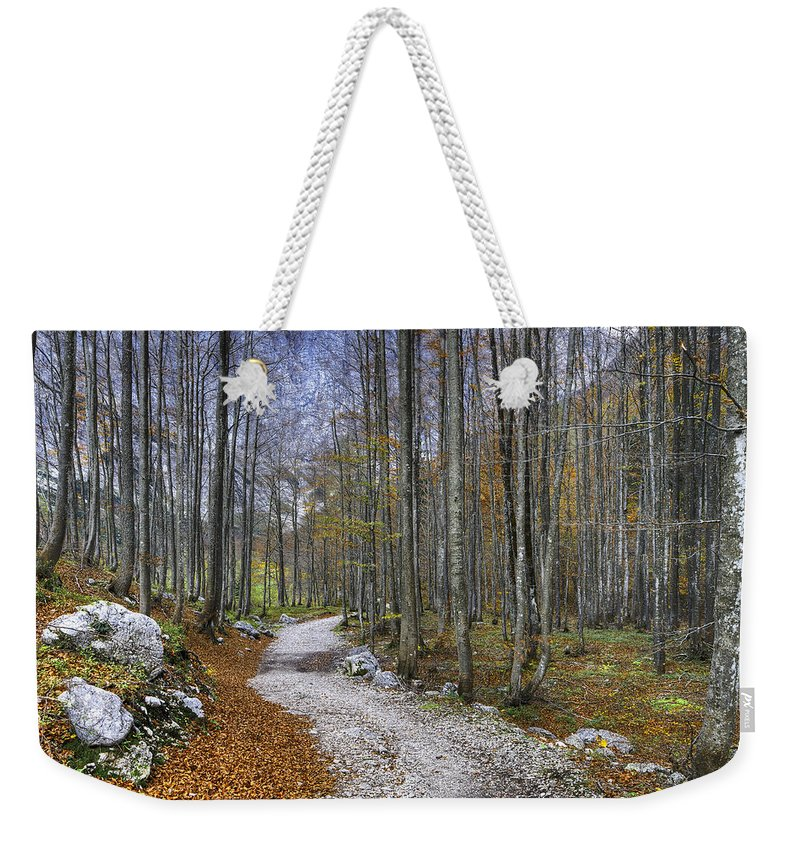 Autumn Weekender Tote Bag featuring the photograph Forest Path by Ivan Slosar