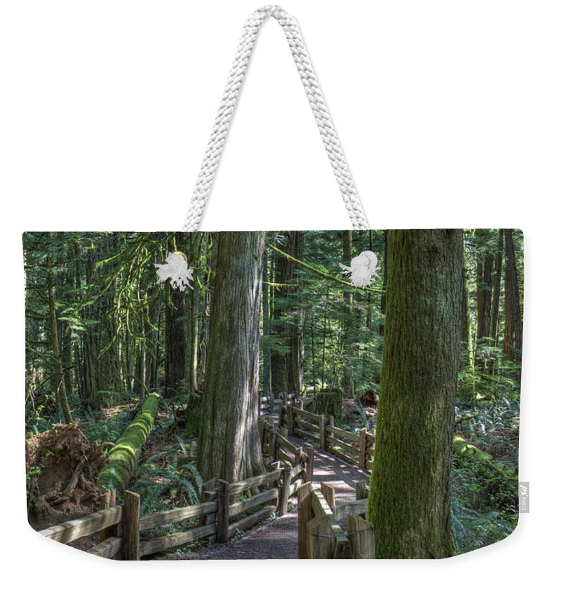 Rail Fence Weekender Tote Bag featuring the photograph Forest Path by Randy Hall