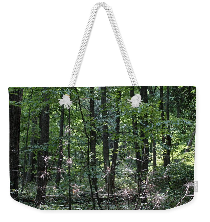 Landscape Weekender Tote Bag featuring the photograph Forest by Scott Angus