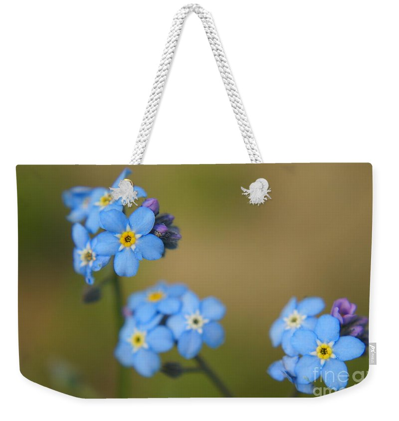 Blue Weekender Tote Bag featuring the photograph Forget Me Not 01 - S01r by Variance Collections