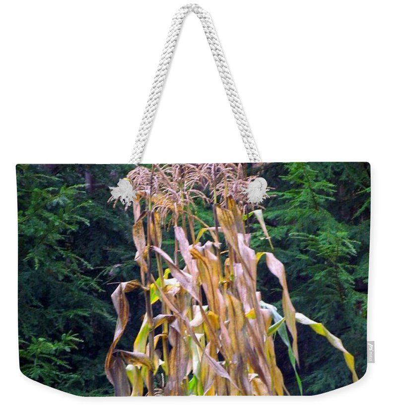 Corn Stalks Weekender Tote Bag featuring the photograph Forgotten Corn Stalks by Elizabeth Dow