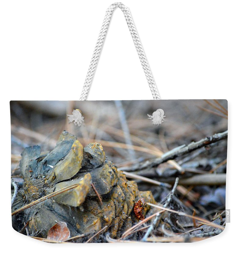 Nevada Weekender Tote Bag featuring the photograph Forgotten Pine Cone 2 by Brent Dolliver