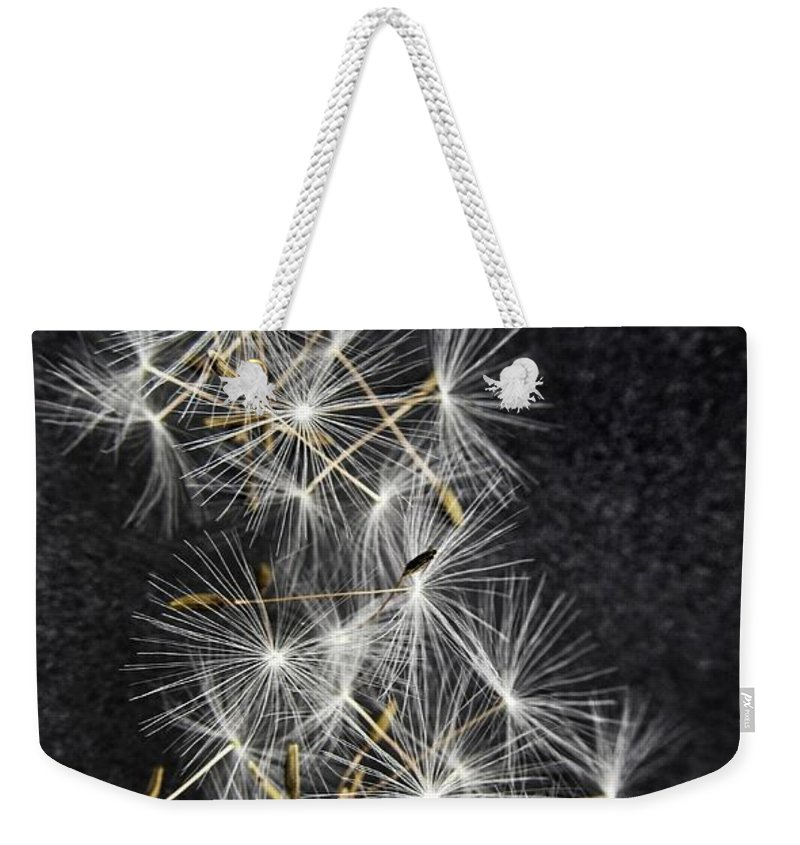 Dandelion Weekender Tote Bag featuring the photograph Forgotten Wishes by Marianna Mills