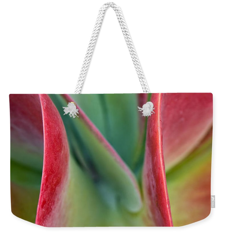 Flower Weekender Tote Bag featuring the photograph Curves by Jean-Pierre Ducondi