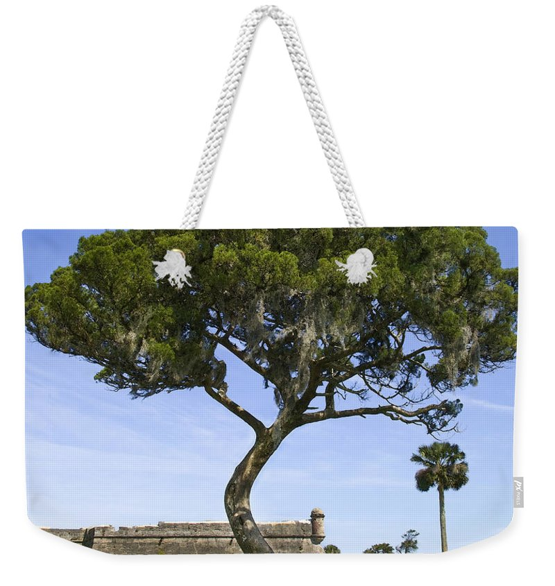 Tree Weekender Tote Bag featuring the photograph Fort It Tude 2 by Rich Franco