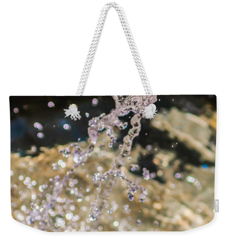Background Weekender Tote Bag featuring the photograph Fountain In Botanical Garden by Alex Grichenko