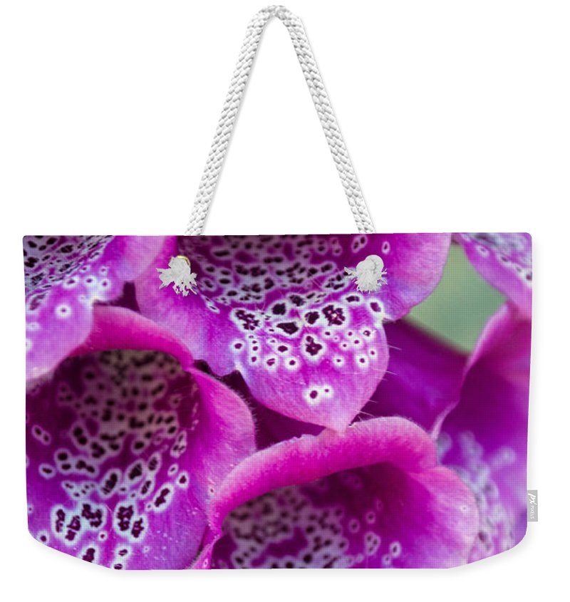 Pink Weekender Tote Bag featuring the photograph Fox Glove by Tikvah's Hope
