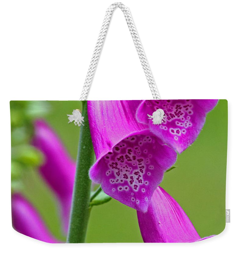 Foxglove Weekender Tote Bag featuring the photograph Foxglove Digitalis Purpurea by Tony Murtagh
