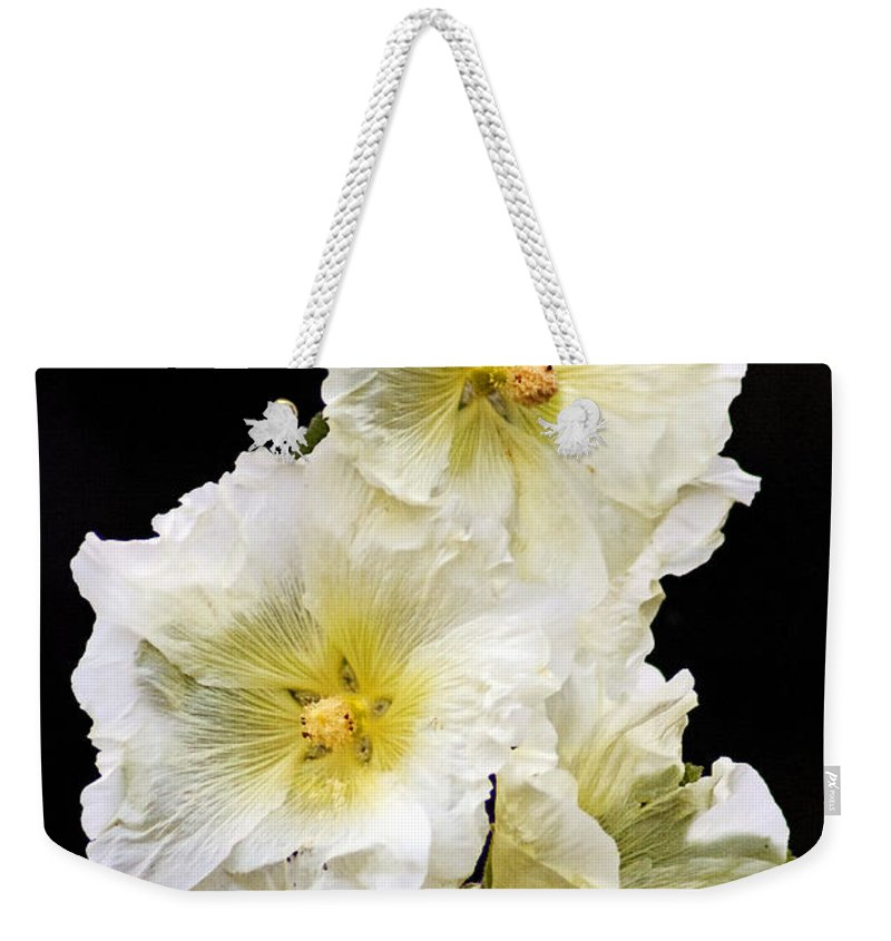 Hollyhock Weekender Tote Bag featuring the photograph Fragile Flower by Joe Geraci