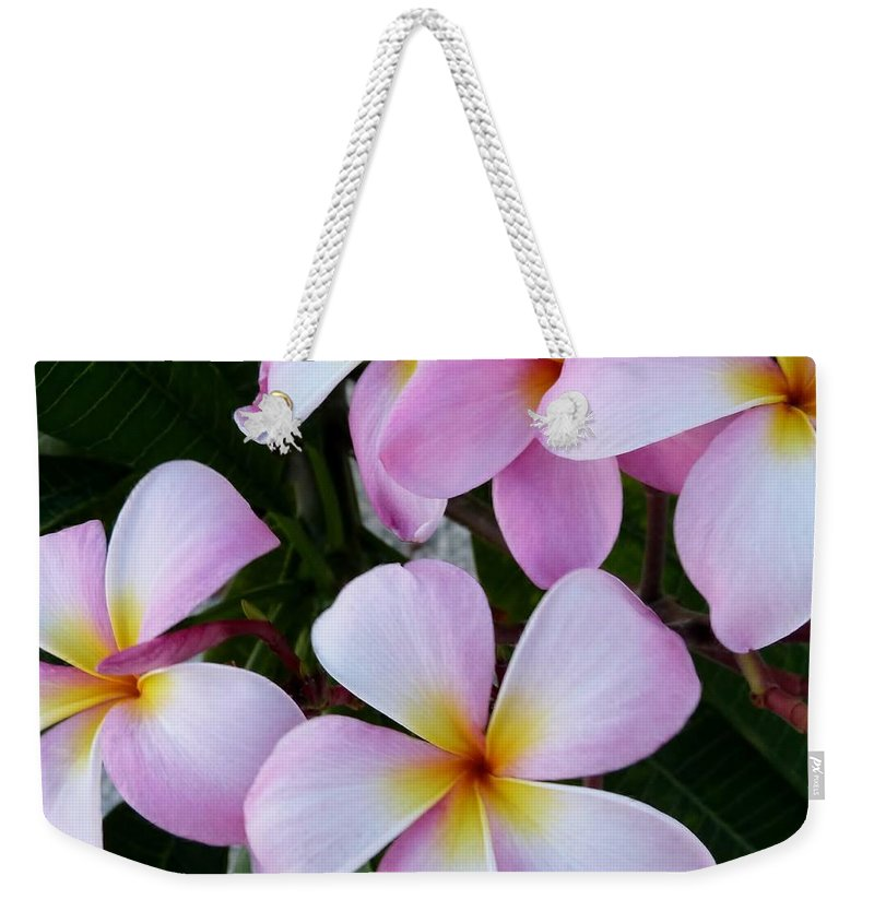 Color Weekender Tote Bag featuring the photograph Frangipani by Amar Sheow