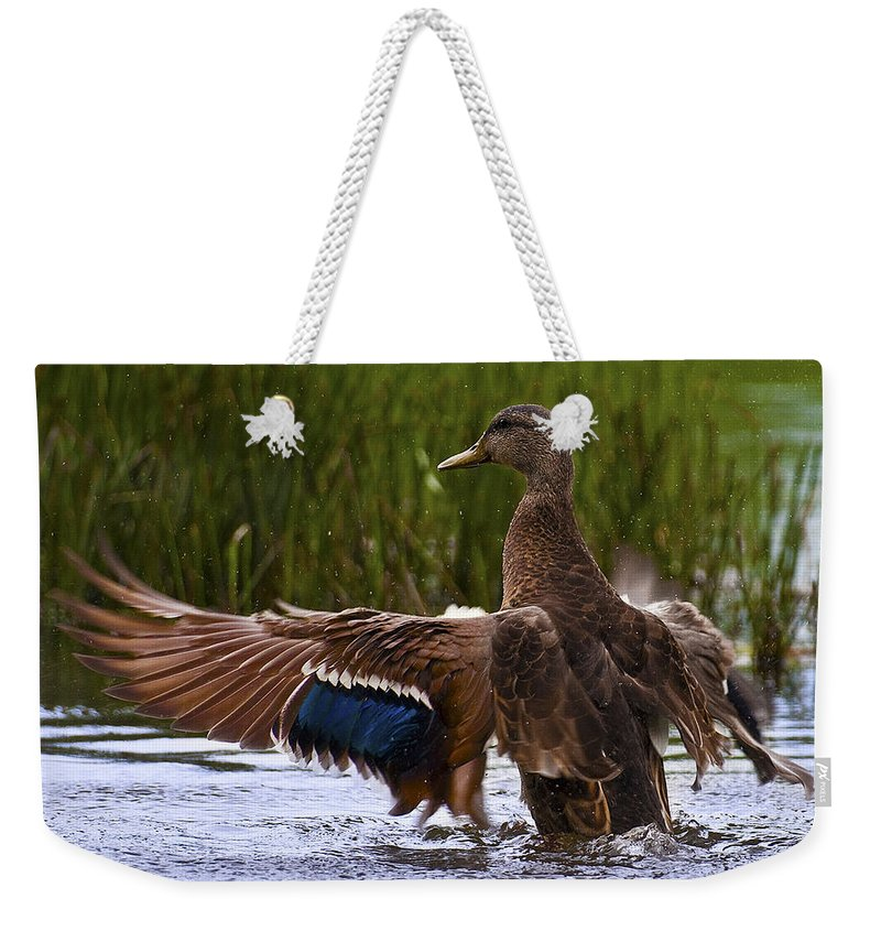 Canada Weekender Tote Bag featuring the photograph Free Beauty.. by Nina Stavlund