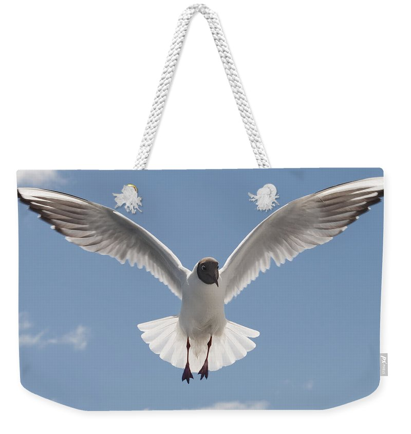 Festblues Weekender Tote Bag featuring the photograph Freedom.. by Nina Stavlund