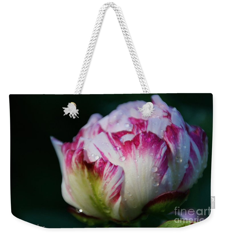 Flower Weekender Tote Bag featuring the photograph Fresh New Beginnings by Susan Herber