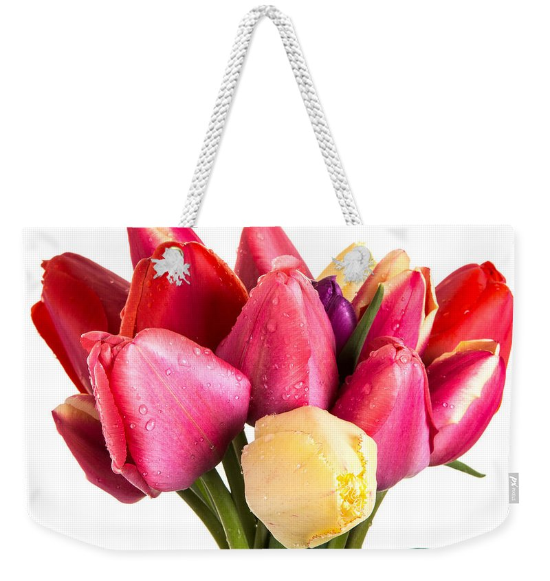 Bloom Weekender Tote Bag featuring the photograph Fresh Spring Tulip Flowers by Edward Fielding