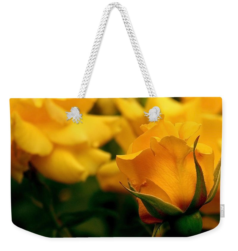 Rose Weekender Tote Bag featuring the photograph Friendship Roses by Rona Black