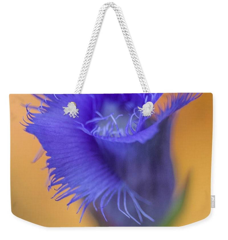 Fringed Gentian Weekender Tote Bag featuring the photograph Fringed Gentian by Dale Kincaid