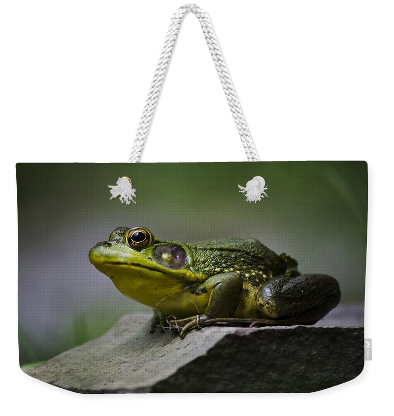 Frog Weekender Tote Bag featuring the photograph Frog Outcrop by Christina Rollo