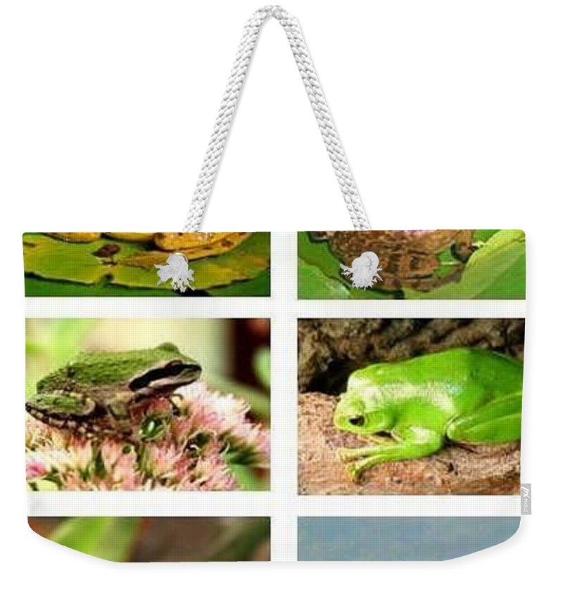 Frog Weekender Tote Bag featuring the photograph Frogs - Boxed Cards by Laurel Talabere
