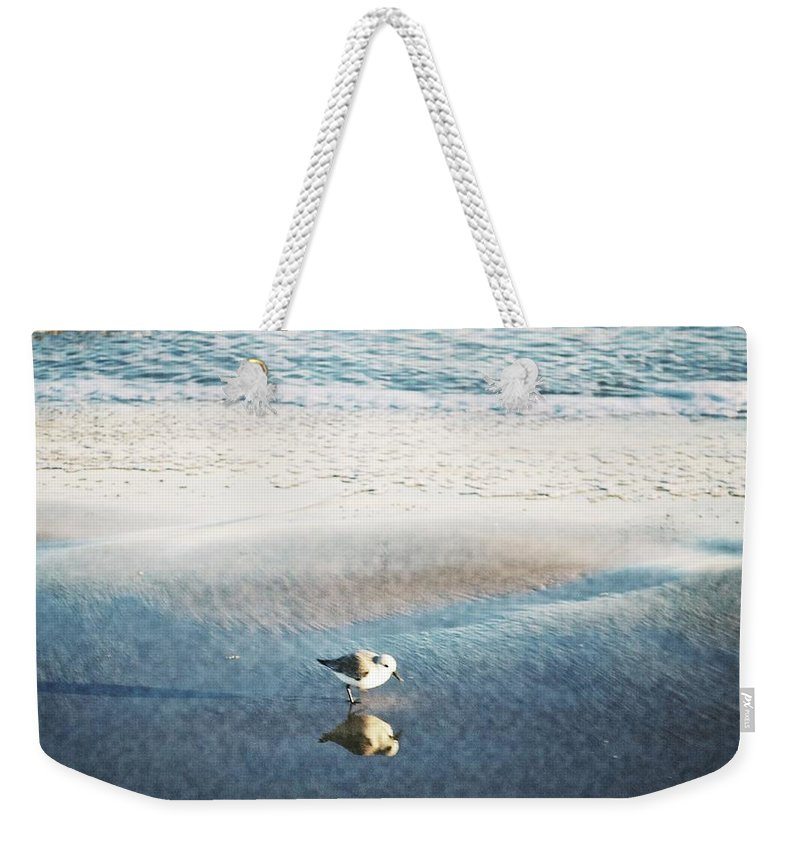 Reflection Weekender Tote Bag featuring the photograph Beach Bird's Reflection by Kristina Deane