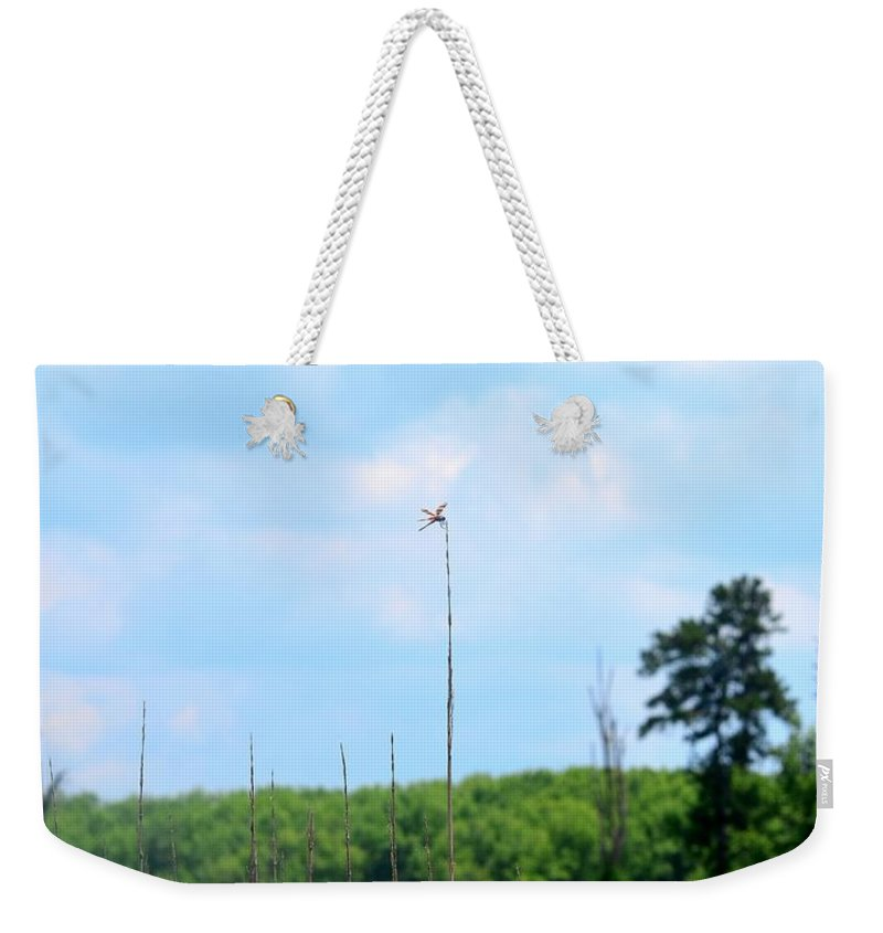 From A Dragonfly's Point Of View Weekender Tote Bag featuring the photograph From A Dragonfly's Point Of View by Maria Urso