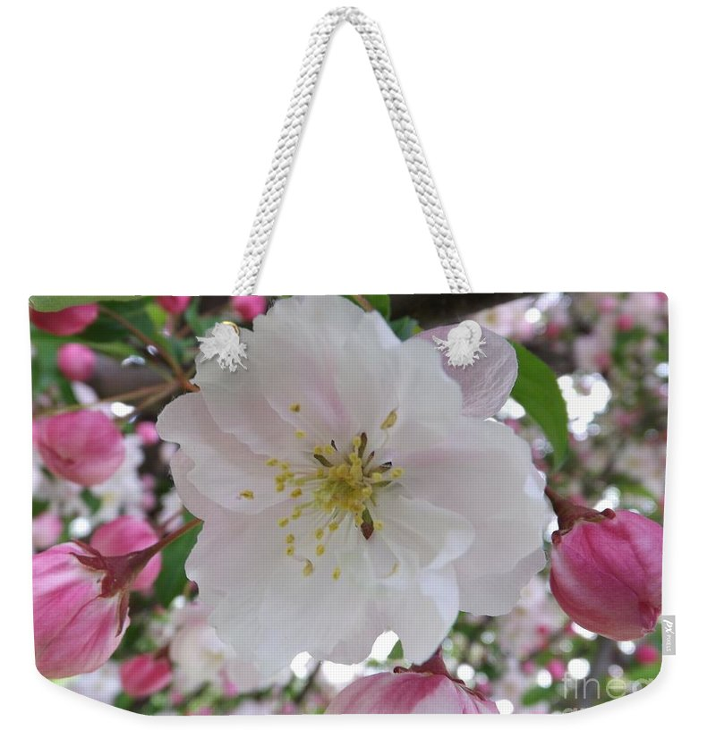 Macro Weekender Tote Bag featuring the photograph Front And Center by Sara Raber