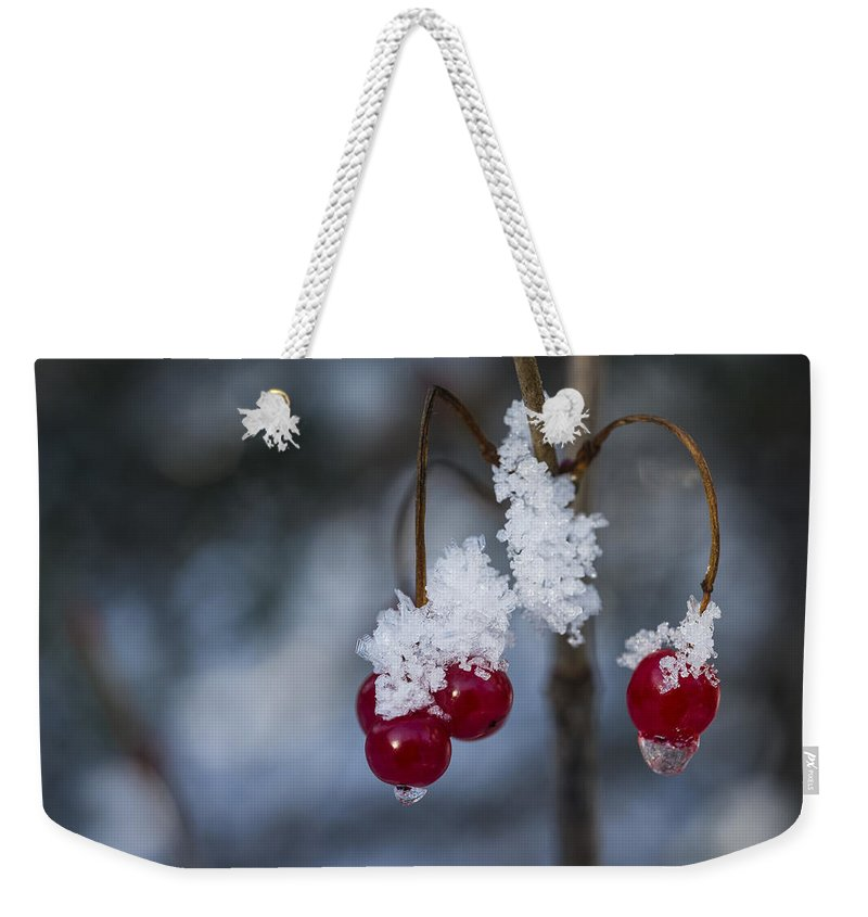 Ice Weekender Tote Bag featuring the photograph Frost Berries by Ted Raynor
