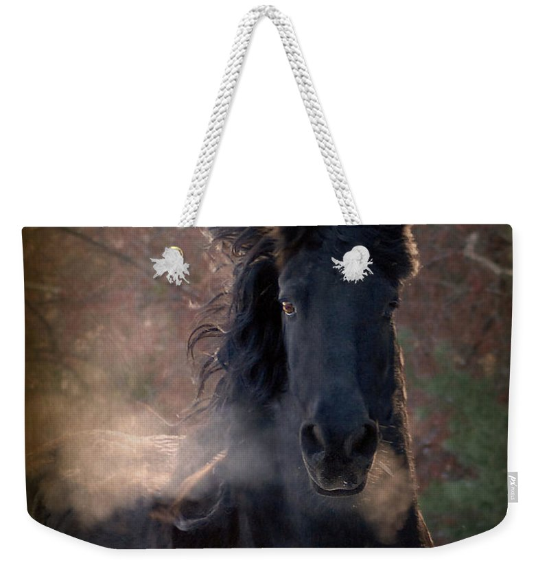 Horses Weekender Tote Bag featuring the photograph Frost by Fran J Scott
