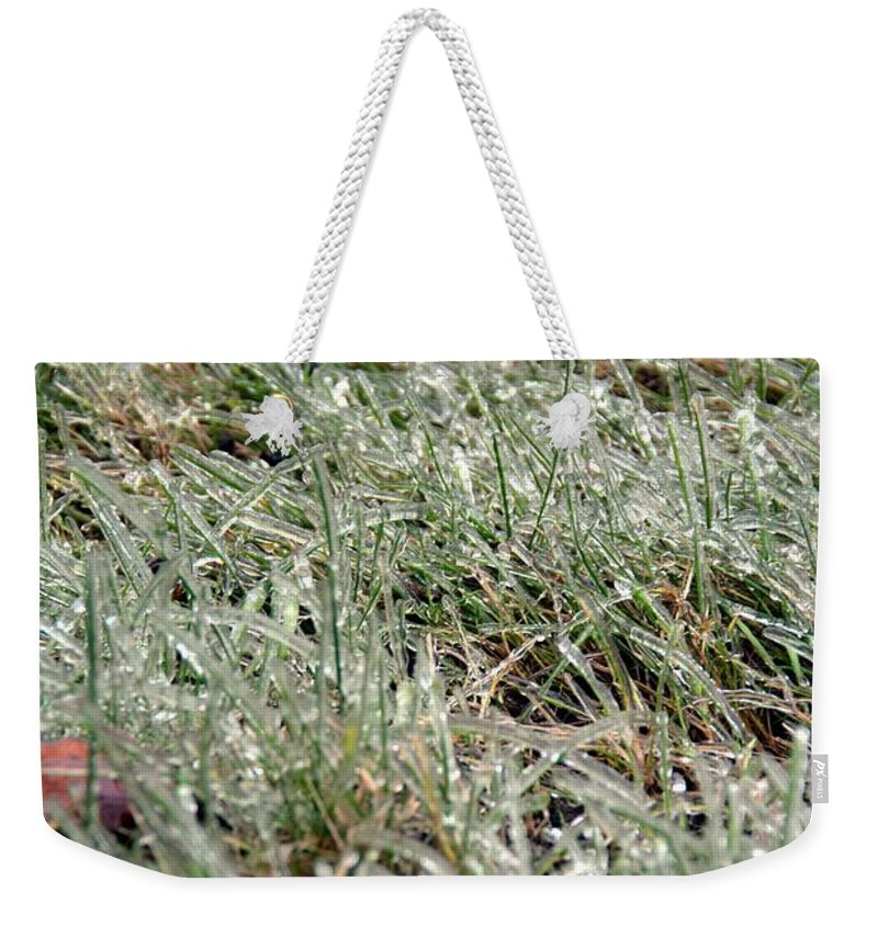 Green Weekender Tote Bag featuring the photograph Frosted Grass by Bonnie Myszka