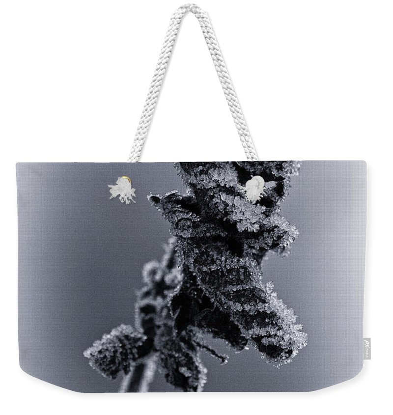 Frost Weekender Tote Bag featuring the photograph Frosted Leaves by David Pringle