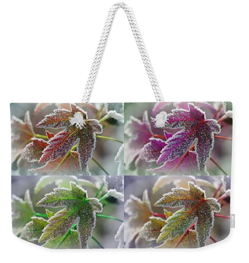 Mccombie Weekender Tote Bag featuring the painting Frosted Maple Leaves In Warm Shades by J McCombie