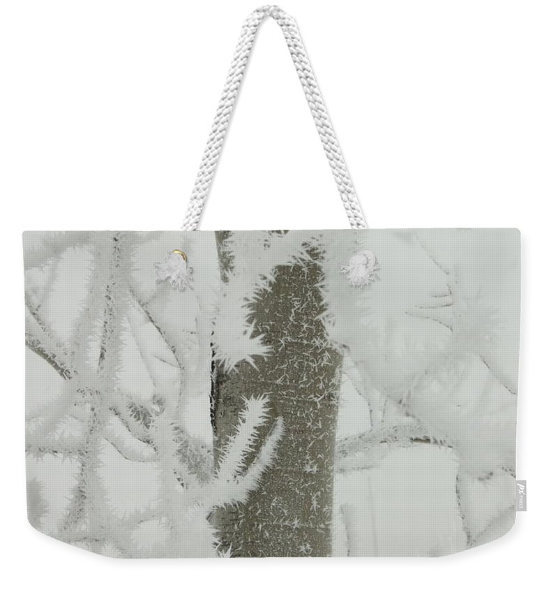 Weekender Tote Bag featuring the photograph Frosty Branches by Katerina Naumenko