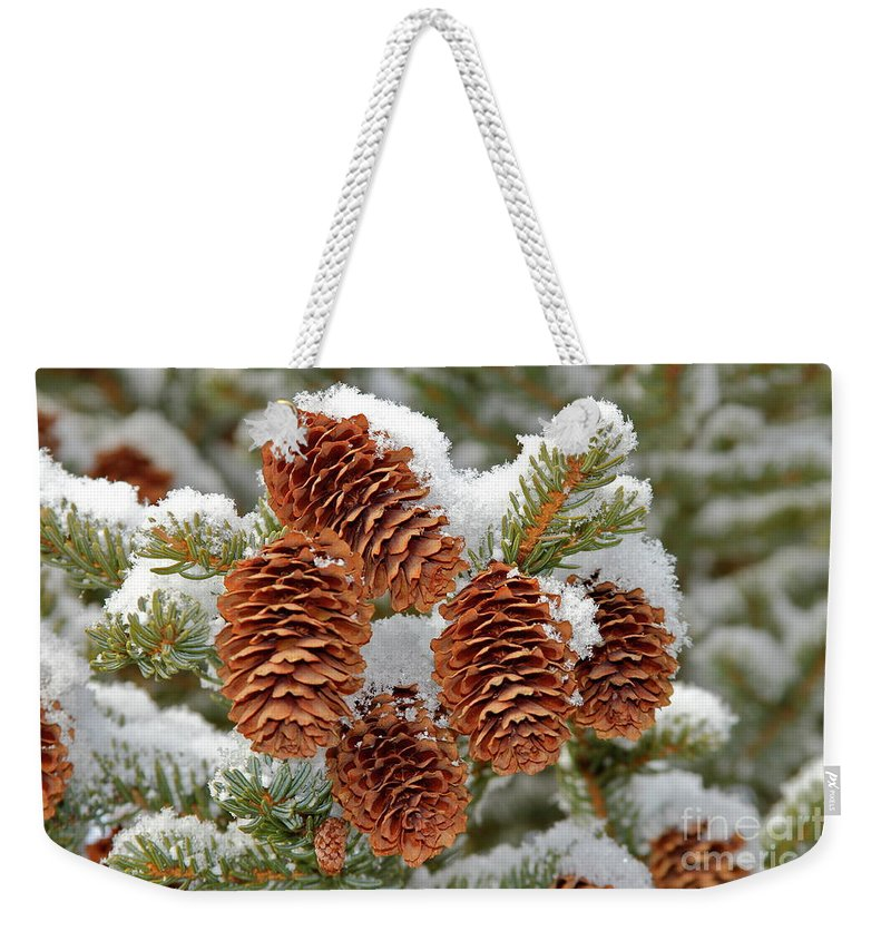 Cones Weekender Tote Bag featuring the photograph Frosty Cones by Rick Monyahan