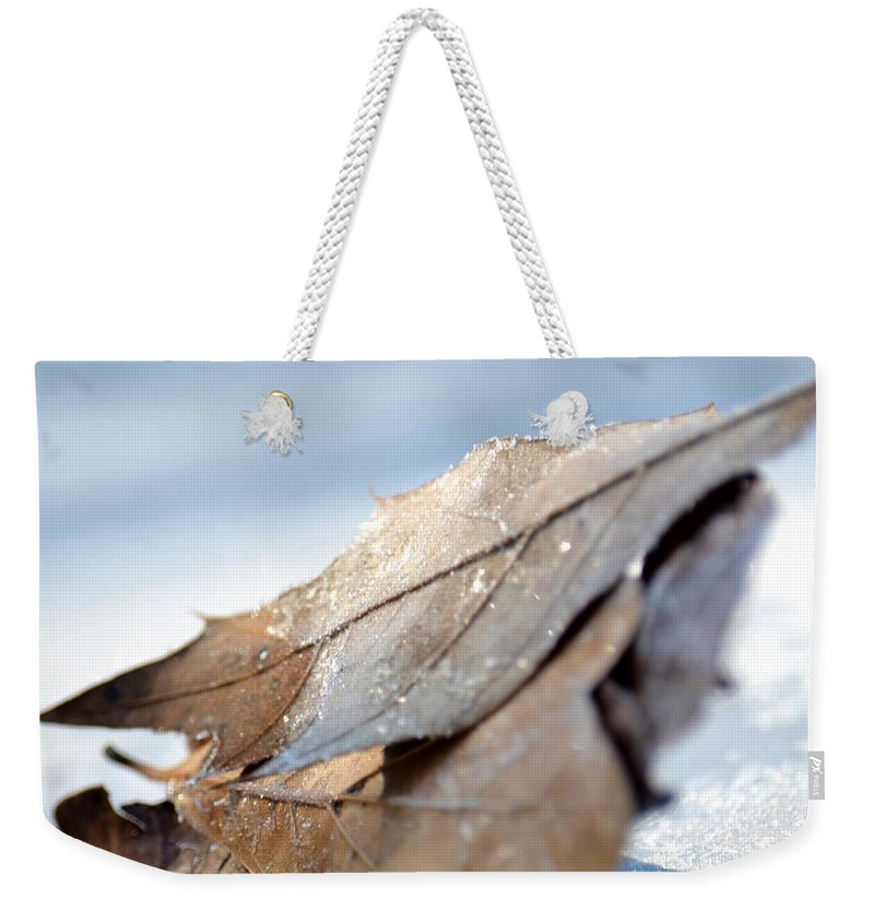 Frosty Leaves In The Morning Sunlight Weekender Tote Bag featuring the photograph Frosty Leaves In The Morning Sunlight by Maria Urso