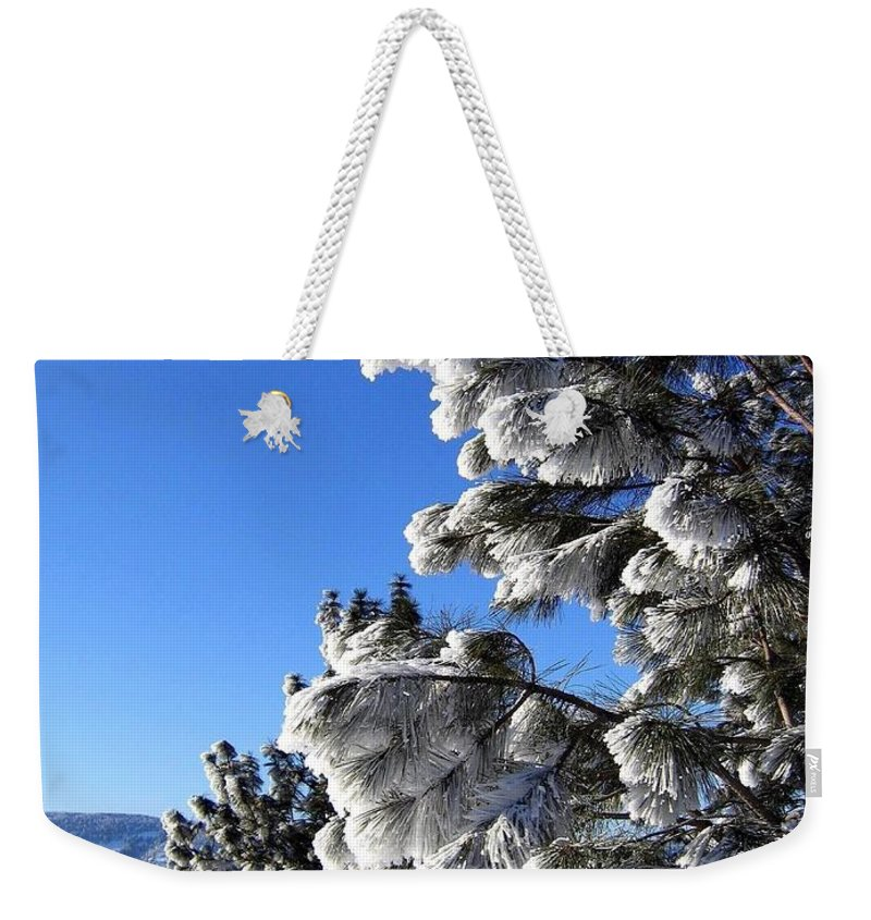 Frost Weekender Tote Bag featuring the photograph Frosty Limbs by Will Borden