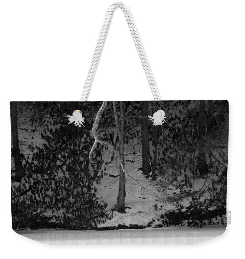 Winter Weekender Tote Bag featuring the photograph Frozen Bench by Scott Hafer