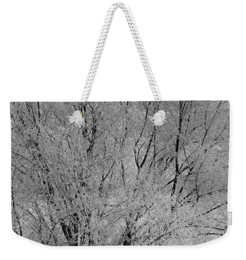 Frozen Weekender Tote Bag featuring the photograph Frozen In Time by Mike Wheeler