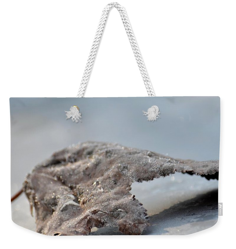 Frozen Leaf Weekender Tote Bag featuring the photograph Frozen Leaf by Maria Urso