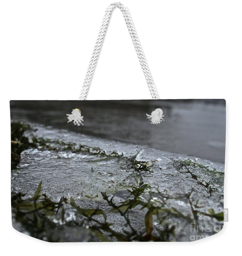 Outdoors Weekender Tote Bag featuring the photograph Frozen Milfoil by Susan Herber